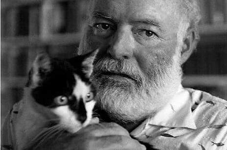 Hemingway in pocherighe